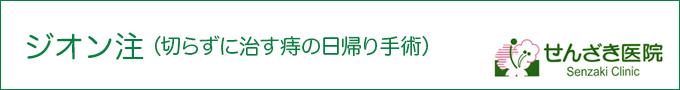 ジオン注(痔の日帰り手術)